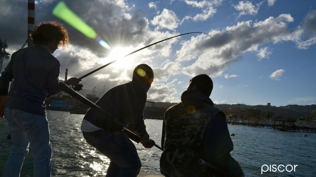 Bolo Rods Bank Fishing 0