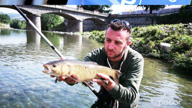 Chub Fishing 3