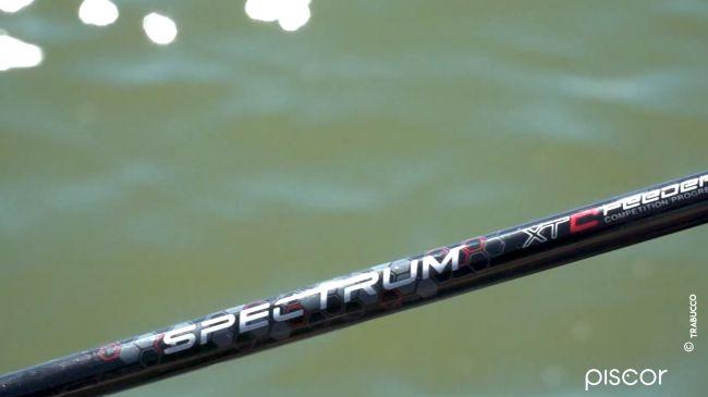 Come pescare a Pellet Feeder nelle Fisheries 3