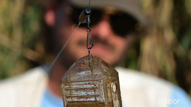 Come Pescare le Orate 6