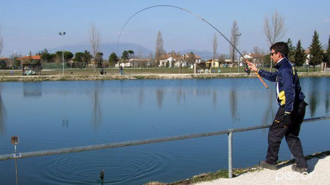 Lake Trout 9