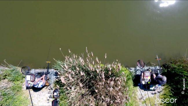 Pêche au Pellet Feeder dans les Réservoirs Privés 12