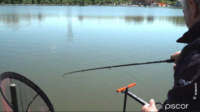 Pellet Feeder Fishing in Fisheries 4