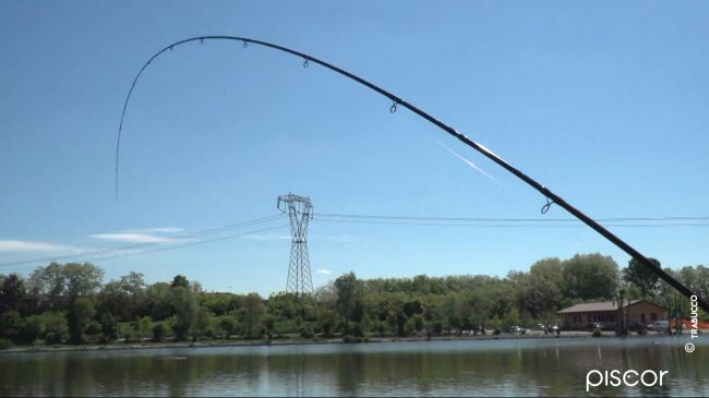 Pellet Feeder Fishing in Fisheries 6