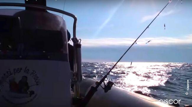 Pesca ai Calamari 7