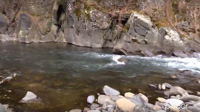 Pesca Alla Trota Selvatica 4