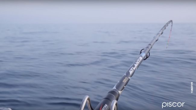 Pesca Dello Scorfano 2