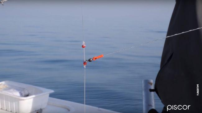 Pesca Dello Scorfano 6