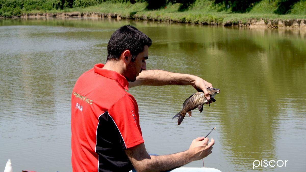 Pesca Allinglese In Carpodromo Come Scegliere E Preparare L