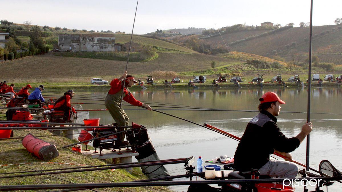 qualità nuovo stile e lusso metà prezzo Pesca a Roubasienne con Montatura a Bandiera in Carpodromo ...
