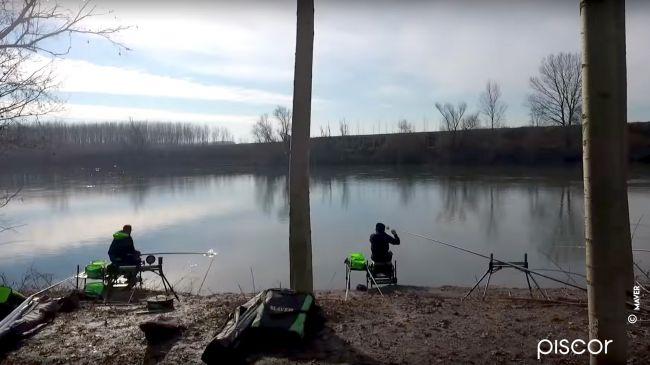Roubasienne per la Pesca al Colpo 0
