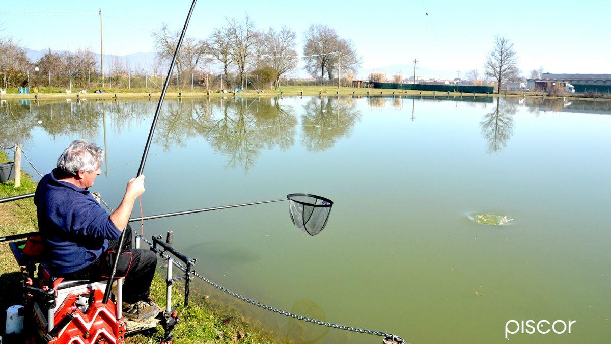 Pesca Allinglese Con Roubaisienne Nuovi Orizzonti Piscor