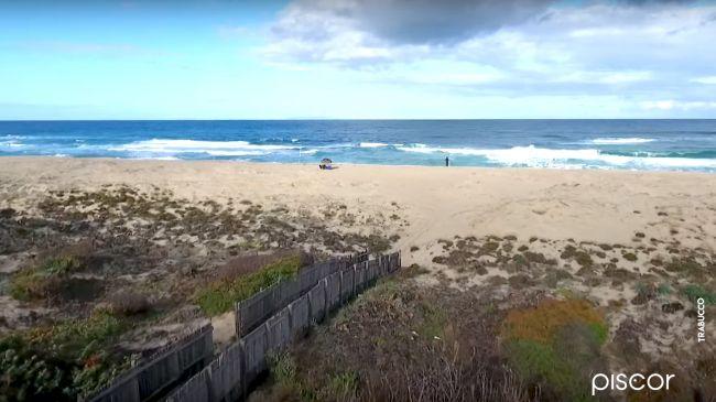 Surfcasting Spigola 0